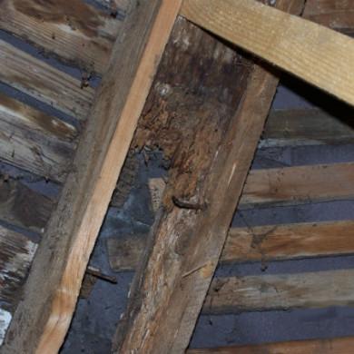 A templom tetőszerkezetének pallóval megerősített szarufája volt, de már nincs...