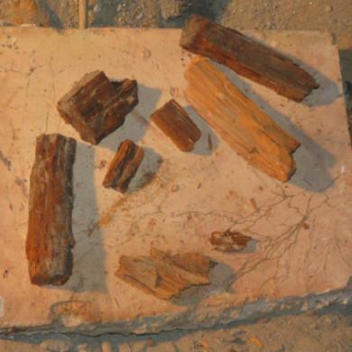 A korhadt fadarabok egy olyan födémgerendából fordultak ki, ami fölött már a padlásburkoló téglát is behálózták a gombafonalak